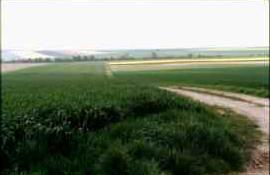 La plaine à proximité d'Anglure